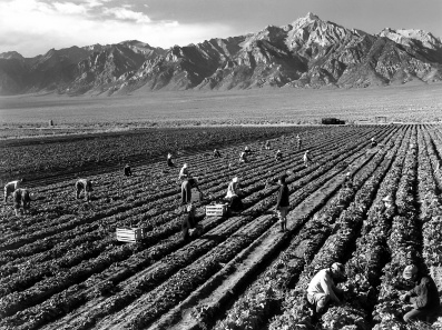 Ansel Adams, Farm workers and Mt. Williamson, 1943