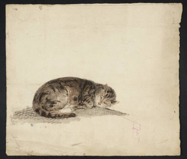 Estudio de un gato durmiendo, William Turner, 1796- 1797