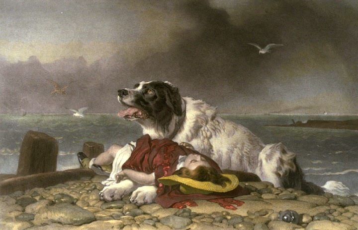 Saved, Edwin Landseer, 1856