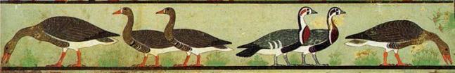 Las Ocas de Meidum, provenientes de la tumba de Nefermaat e Itet