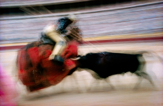 motion-bullfight-color-13