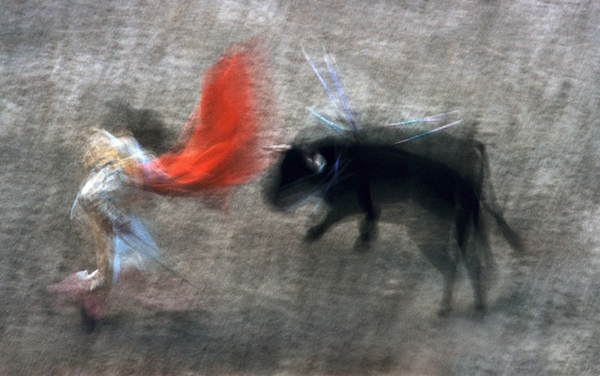 motion-bullfight-color-14