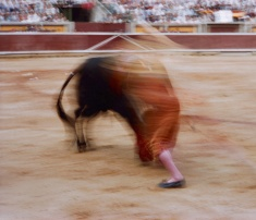 motion-bullfight-color-3