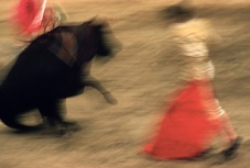 motion-bullfight-color-4