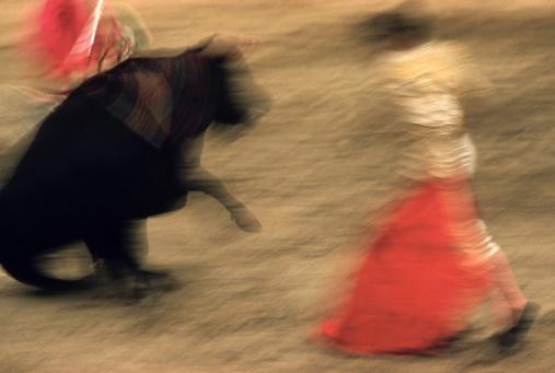 motion-bullfight-color-4