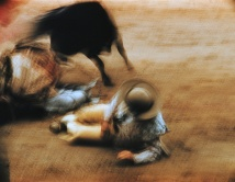 motion-bullfight-color-5
