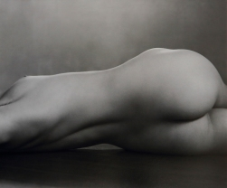 Nude, Edward Weston, 1925