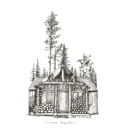 lauraagusti-cabinforest_670